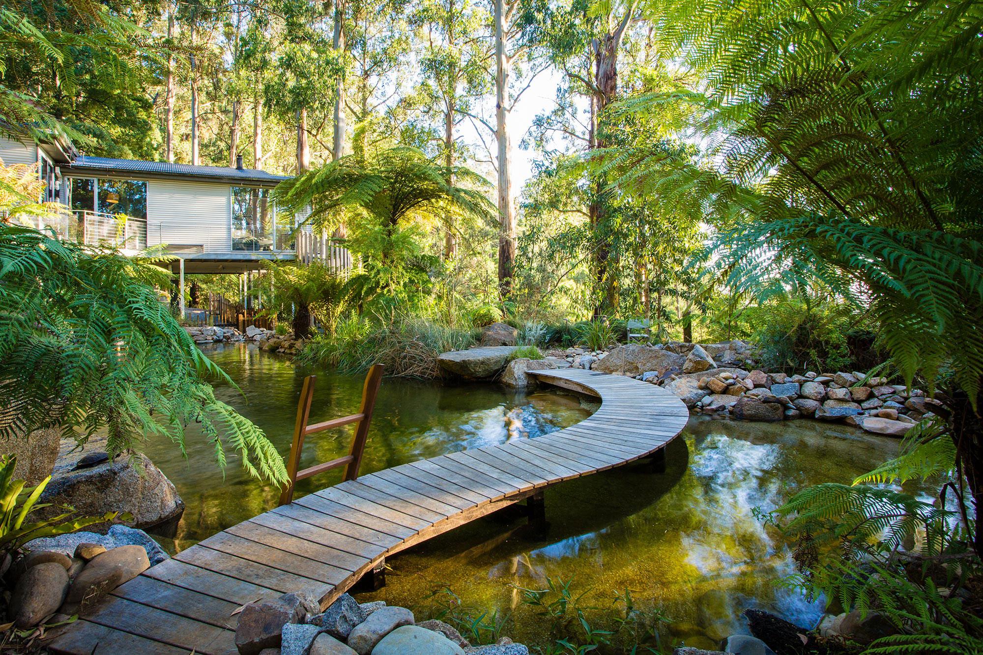 phillip johnson landscapes - natural pools - garden design